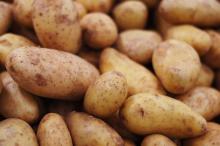 Zasady przechowywania ziemniaków