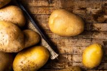 Rola wentylacji w przechowalniach ziemniaków